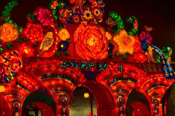 chinese-new-year-lights-beautiful-flowers