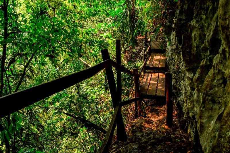 Hike Tikal National Park