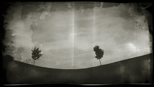 Photograph of two trees on a ridge taken with a pin hole camera