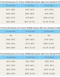 Term life insurance rates also costs rh beyondquotes