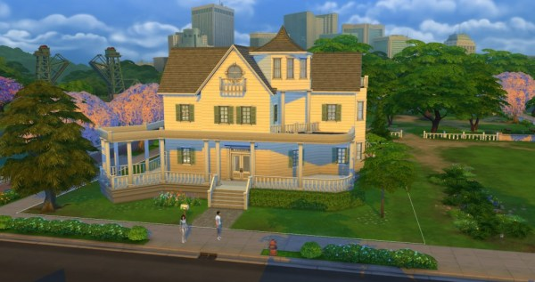 ts4_review_build_2
