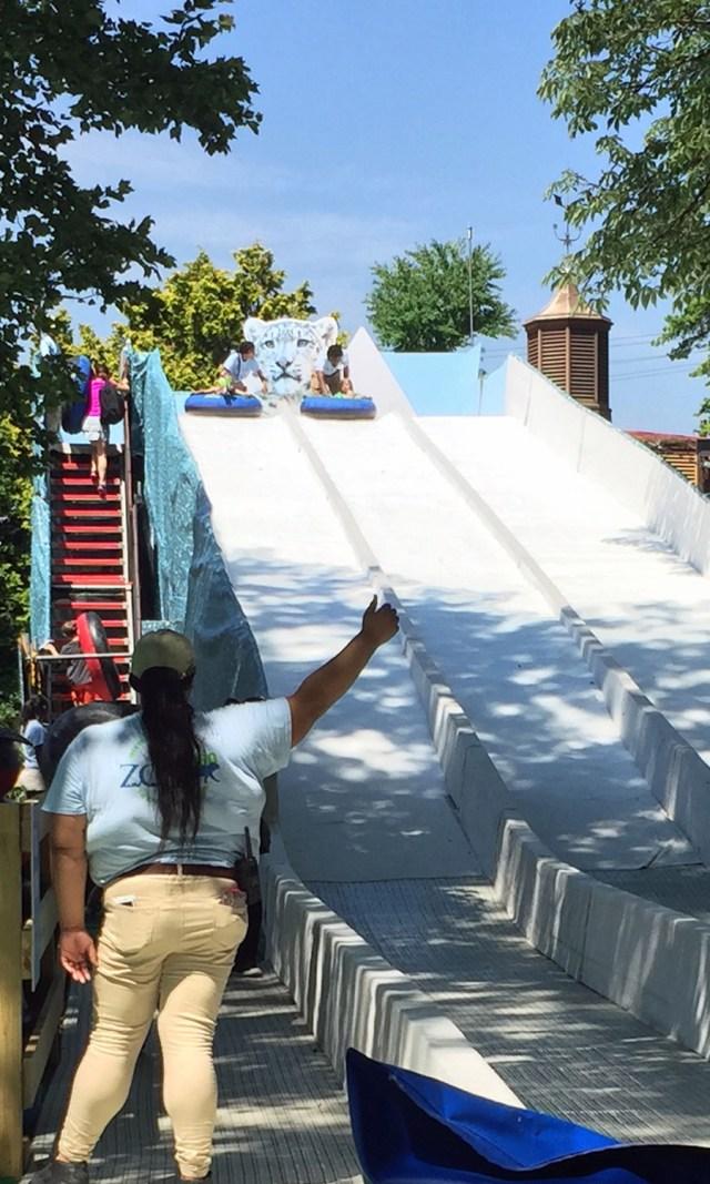 120 foot slide at Philadelphia Zoo!