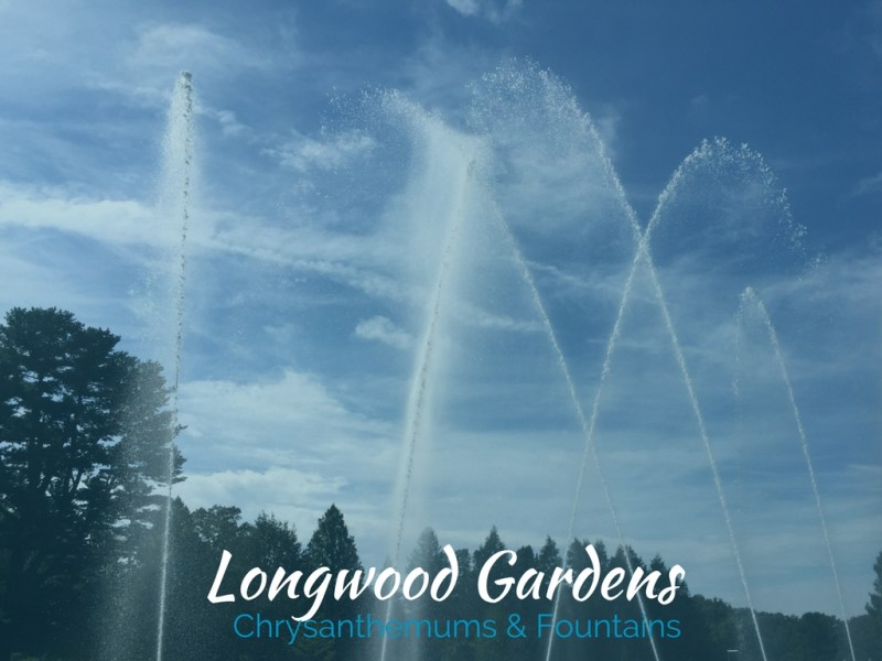 Longwood Gardens trip with moms and kids. Fountains, chrysanthemums, lily pads and more.