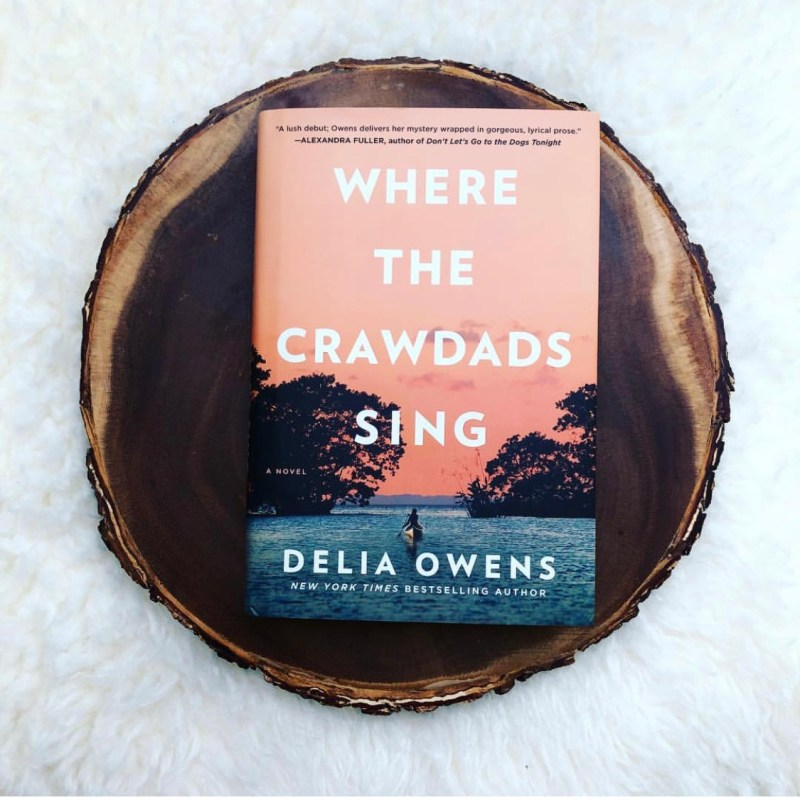 How to Host a Book Club for Where the Crawdads Sing by Delia