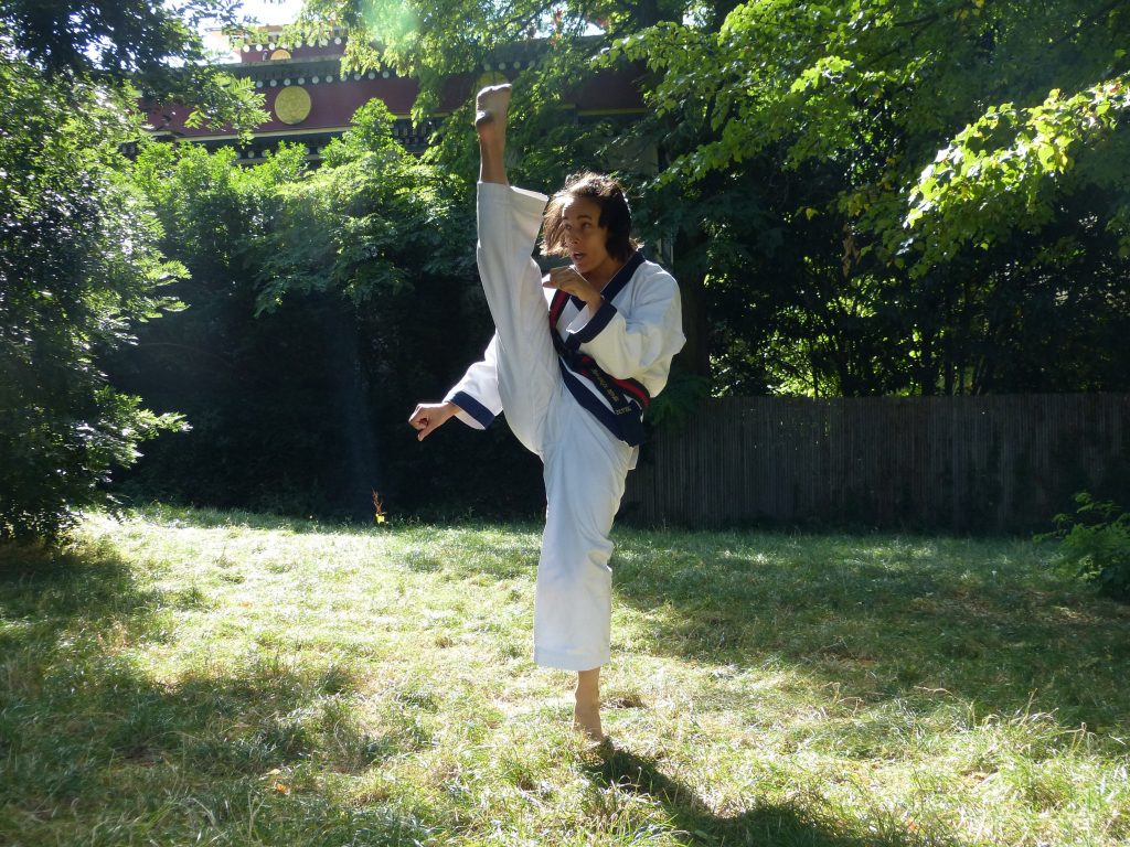 Elodie Mollet SBN of France Moo Duk Kwan doing a front stretch kick