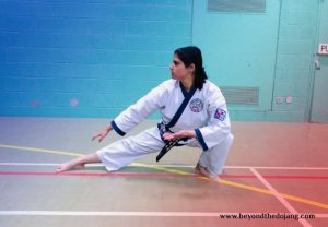 Read more about the article Do you know your Martial Way?