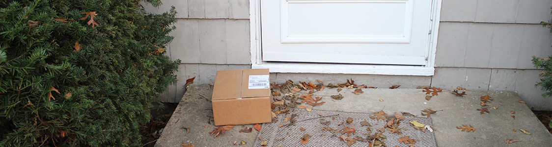 Shipped e-commerce product arrived at front door