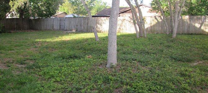 Defining the Yard