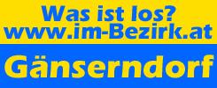 logo-ibg-2016-245×100