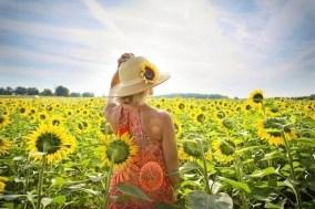 Slnko a vitamín D