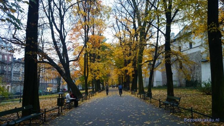 krakau weer - herfst