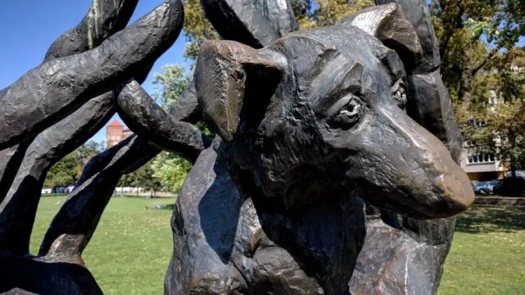 Monument voor een hond in Krakau - Bezoek Krakau
