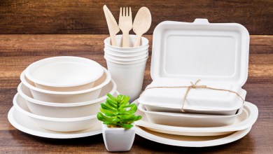 Photo of HERALD INTRODUCES ITS BAGASSE RANGE