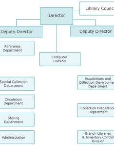 Organizational structure of the main library also rh bgh