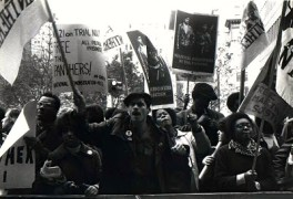 The Black Panthers and the Young Lords