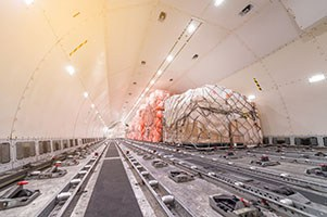 Air Freight Forwarder - Cargo pallets being loaded into cargo plane.
