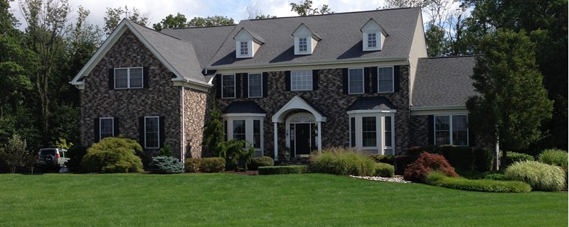 Complete Lawn, Tree, And Shrub Care