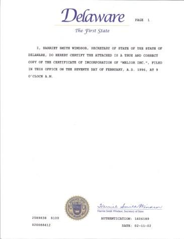 1996 Delaware Incorporation