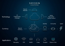 Skywire Ecosystem