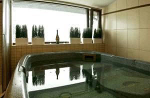 стая с джакузи в хотел Еди в София