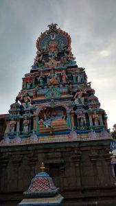 DD 24 - Vimana Gopuram