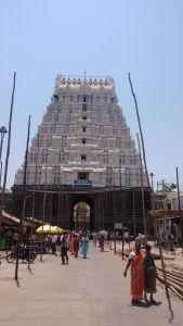DD 42 - Chidambaram Temple Raja Gopuram