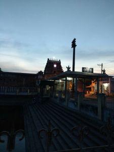 DD 59 - Rajagopuram