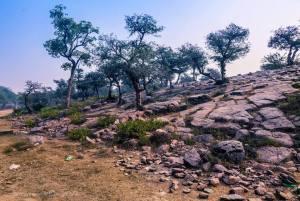 A maravilhosa colina de Govardhana