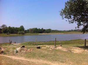 Madhyadvipa