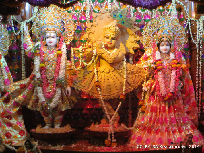 Sri Sri Radha-Vinoda Bihari, Sri Rupa Sanatana Gaudiya Matha