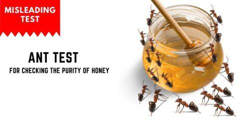 Benefits Raw Honey