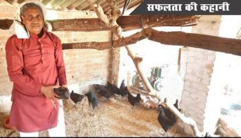 बादाम सिंह यादव, कड़कनाथ मुर्गा पाल