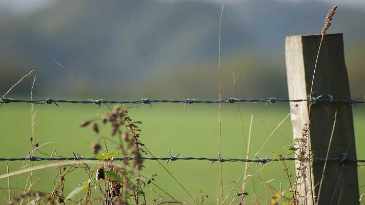 फेंसिंग योजना का लाभ उठाएं उद्यानिकी कृषक