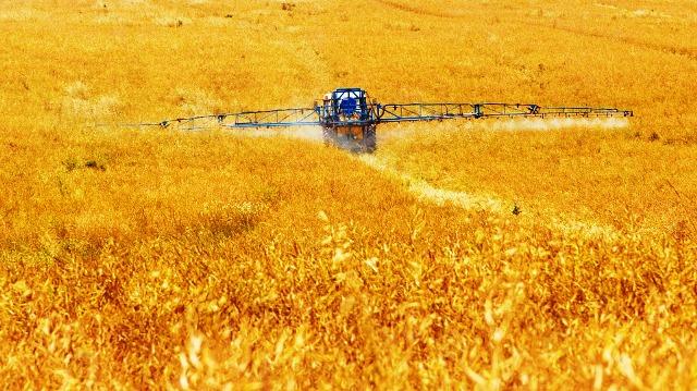 pupuk, pertanian, nitrat
