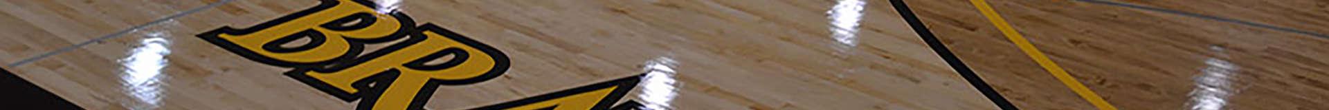 womens basketball banner