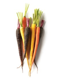 Colored Carrot Baby (100g)