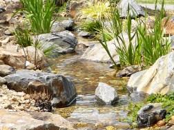 Garden stream in front yard in Cranbourne