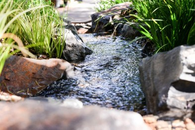 Calming waters - pondless stream