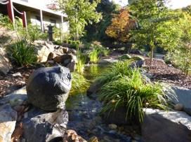Natural pondless stream in Japanese garden.