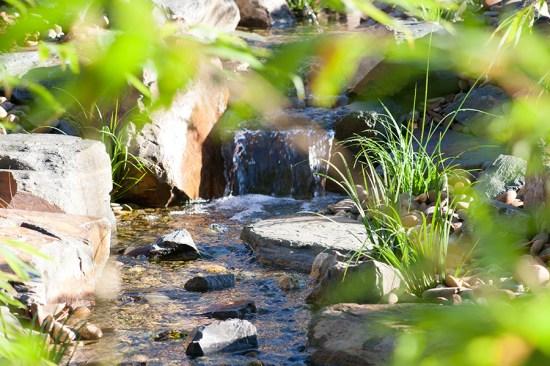 Eltham waterfall