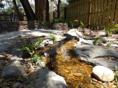 Gentle meandering creek in Ferntree Gully