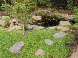 Garden fish pond in Japanese style garden