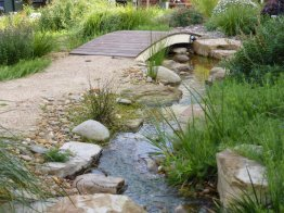 Garden stream in a native style garden.