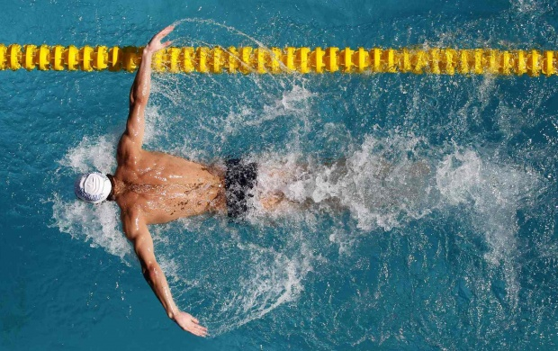 Picasso Hd Wallpaper Sport Swimmer Wallpapers