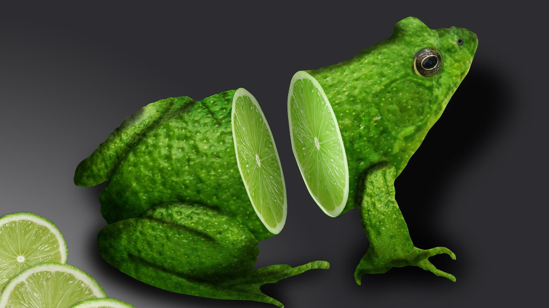 Download Wallpaper Pc 3d Lemon Frog Wallpapers 1920x1080 395436