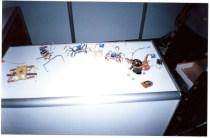 My exhibit at Techfest 2003