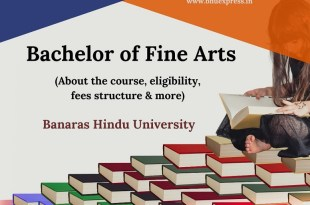 Bachelor of Fine Arts (BFA)