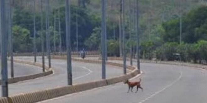 Weekend Lockdown in Uttar Pradesh