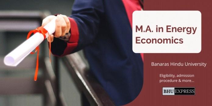 M.A. in Energy Economics from Banaras Hindu University