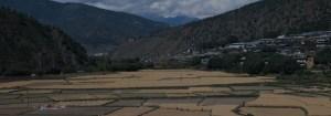 Bhutan Samtengang Winter Trek 10 days